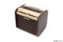 Combos Fishman Loudbox Mini 2